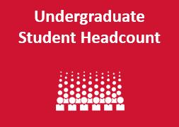 UG Student Headcount